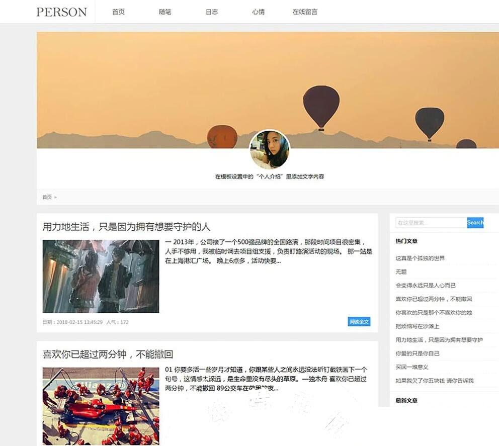 简洁PERSON个人博客新闻资讯网站模板源码插图